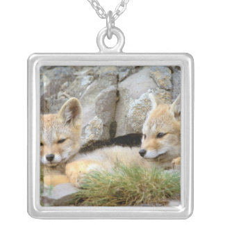 South America, Chile, Torres del Paine Silver Plated Necklace