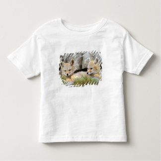 South America, Chile, Torres del Paine Toddler T-shirt