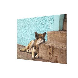 South America, Chile, Valparaiso. German Gallery Wrap Canvas