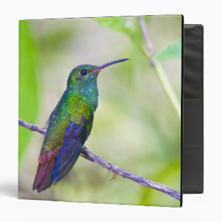 South America, Costa Rica, Sarapiqui, La Selva 3 Ring Binder