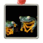 South America, Ecuador, Amazon. Leaf frogs Metal Ornament