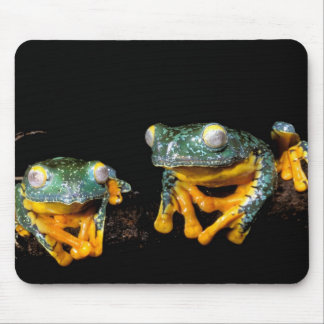 South America, Ecuador, Amazon. Leaf frogs Mouse Pad