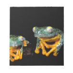 South America, Ecuador, Amazon. Leaf frogs Memo Notepads