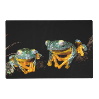 South America, Ecuador, Amazon. Leaf frogs Placemat