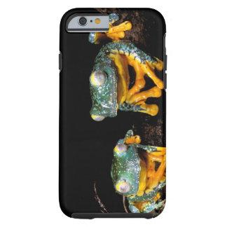 South America, Ecuador, Amazon. Leaf frogs Tough iPhone 6 Case