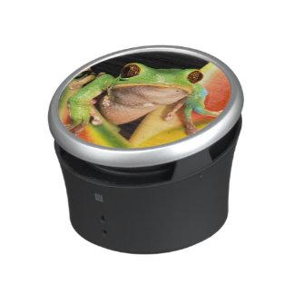 South America, Ecuador, Amazon. Tree frog Bluetooth Speaker