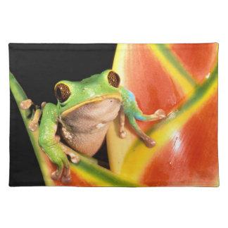 South America, Ecuador, Amazon. Tree frog Cloth Placemat
