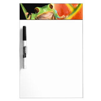 South America, Ecuador, Amazon. Tree frog Dry-Erase Board