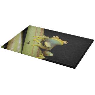 South America, Ecuador, Amazon. Tree frog (Hyla Cutting Board