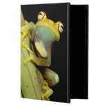 South America, Ecuador, Amazon. Tree frog (Hyla iPad Air Cases
