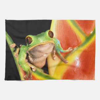 South America, Ecuador, Amazon. Tree frog Kitchen Towel