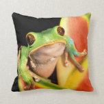 South America, Ecuador, Amazon. Tree frog Pillow