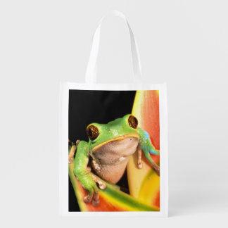 South America, Ecuador, Amazon. Tree frog Reusable Grocery Bags
