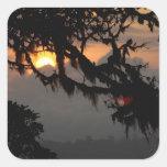 South America, Ecuador, cloud forest scene in Square Sticker