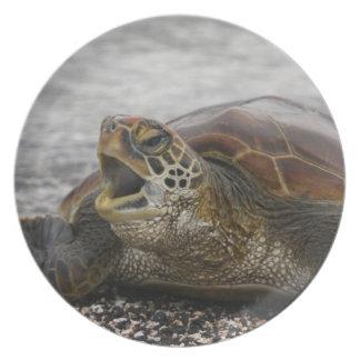 South America, Ecuador, Galapagos Islands, 2 Melamine Plate