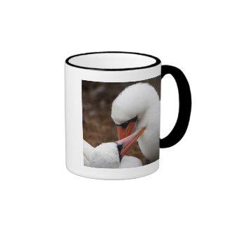 South America, Ecuador, Galapagos Islands. Nazca Ringer Mug