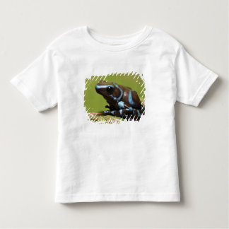 South America, Panama. Close-up of blue and Toddler T-shirt