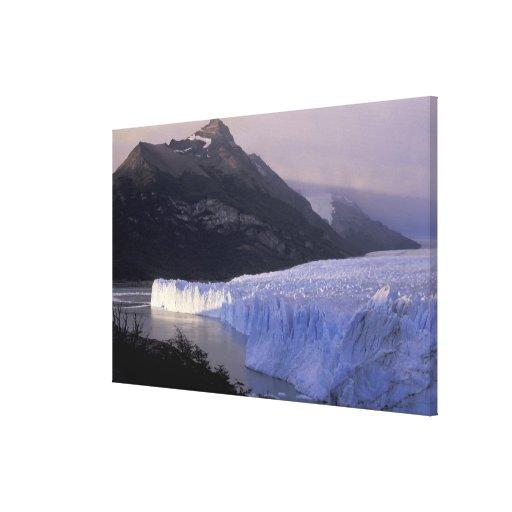 South America, Patagonia, Argentina Parque Canvas Print