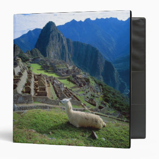 South America, Peru. A llama rests on a hill Binder