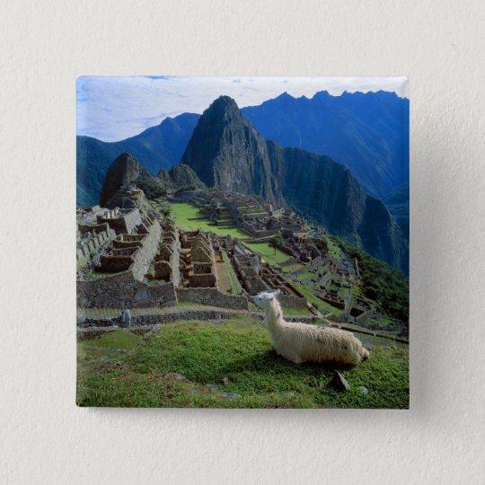 South America, Peru. A llama rests on a hill Button