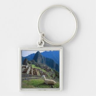 South America, Peru. A llama rests on a hill Silver-Colored Square Keychain