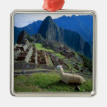 South America, Peru. A llama rests on a hill Square Metal Christmas Ornament