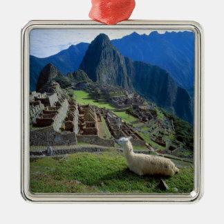 South America, Peru. A llama rests on a hill Square Metal Christmas Ornament