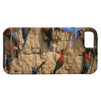 South America, Peru, Manu National Park, iPhone 5 Cover