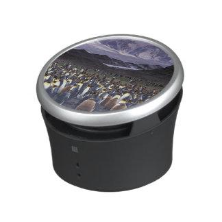 South America, South Georgia Island, King Bluetooth Speaker