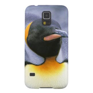 South America South Georgia Island King Galaxy S5 Case
