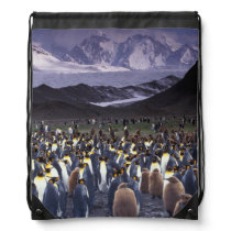 South America, South Georgia Island, King Drawstring Backpack