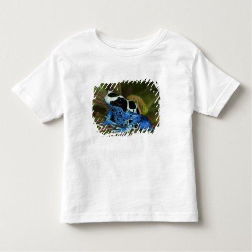 South America, Surinam. Close-up of Patricia Toddler T-shirt