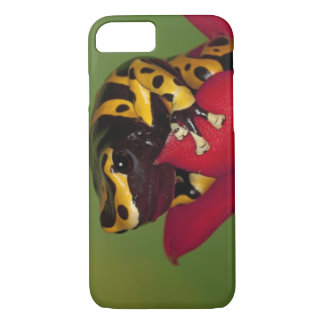 South America, Venezuela. Close-up of iPhone 8/7 Case