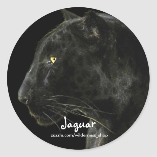 South American Black Jaguar Wildlife Collector Sticker