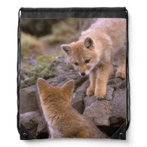 South American Gray Fox (Lycalopex griseus) pair Drawstring Backpack