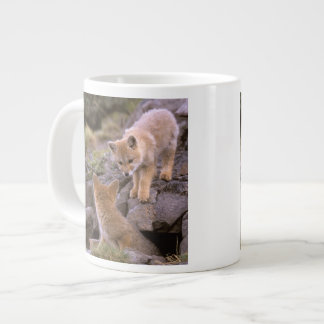 South American Gray Fox (Lycalopex griseus) pair Giant Coffee Mug