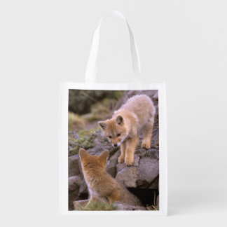 South American Gray Fox (Lycalopex griseus) pair Grocery Bags