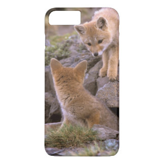 South American Gray Fox (Lycalopex griseus) pair iPhone 7 Plus Case
