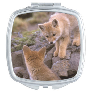 South American Gray Fox (Lycalopex griseus) pair Makeup Mirror