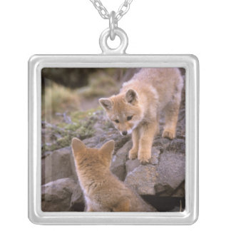 South American Gray Fox (Lycalopex griseus) pair Silver Plated Necklace