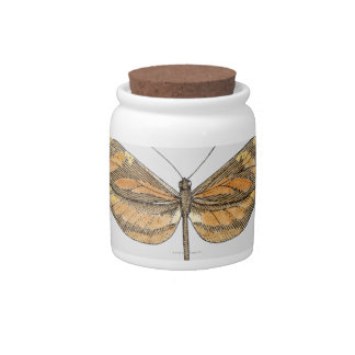 South American Tiger Candy Jars