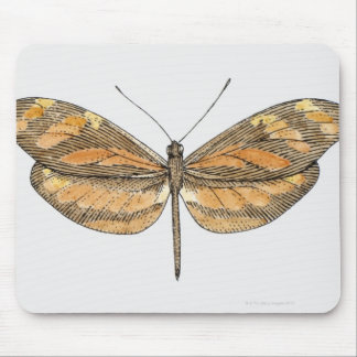 South American Tiger Mouse Pads
