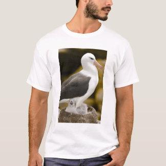 South Atlantic, Falkland Islands, New Island. 2 T-Shirt