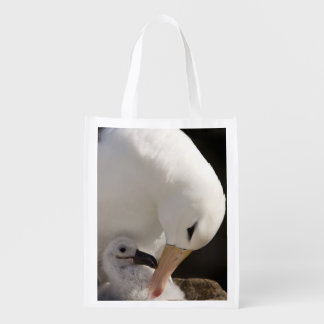 South Atlantic, Falkland Islands, New Island. Grocery Bags