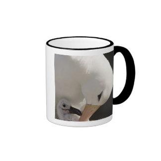 South Atlantic, Falkland Islands, New Island. Ringer Coffee Mug