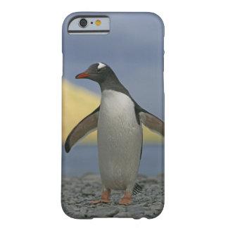 South Atlantic Ocean, South Georgia Island, iPhone 6 Case