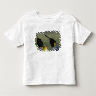 South Atlantic Ocean, South Georgia Island, Toddler T-shirt