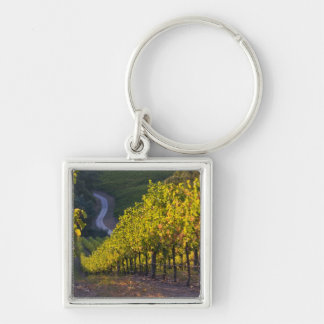 South Australia, Adelaide Hills, Summertown. 2 Silver-Colored Square Keychain