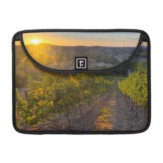 South Australia, Adelaide Hills, Summertown. MacBook Pro Sleeve