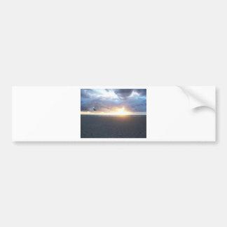 South Beach Bumper Sticker